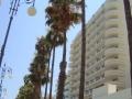 Foinikoudes_beach_in_Larnaca_Republic_of_Cyprus_4.jpg