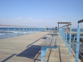 Promenade_Larnaca.jpg