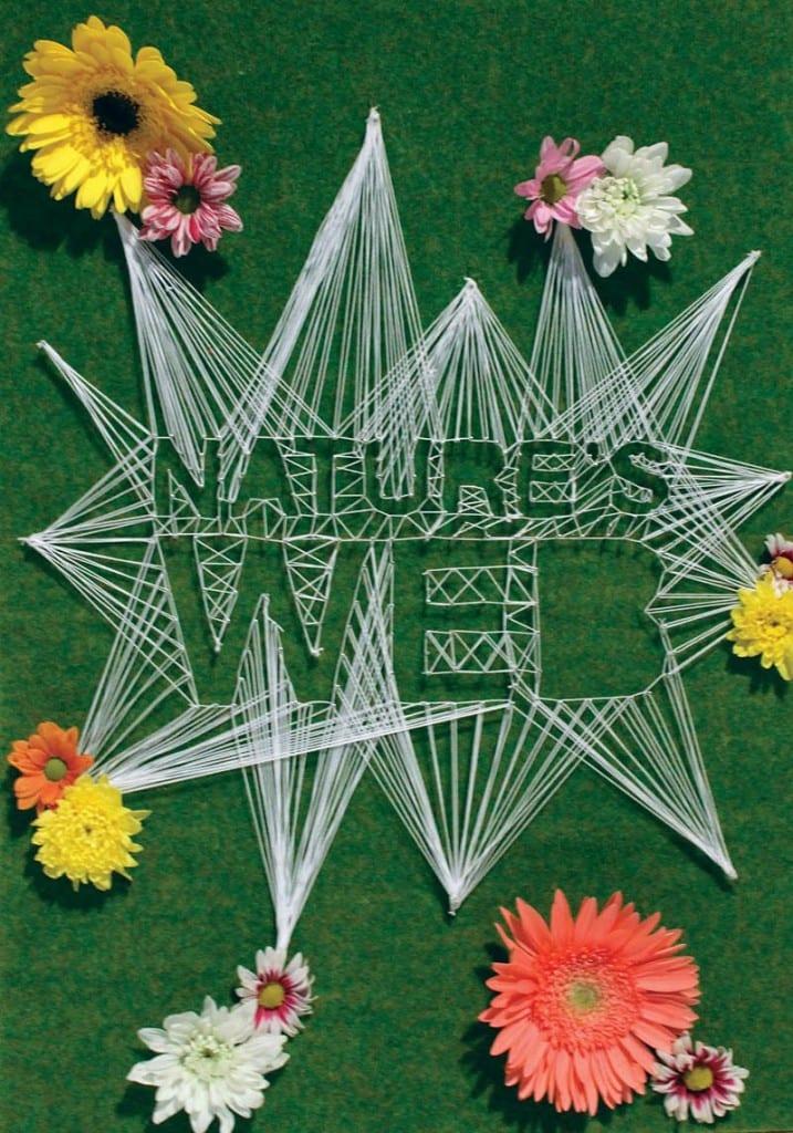 Natures Web Final2