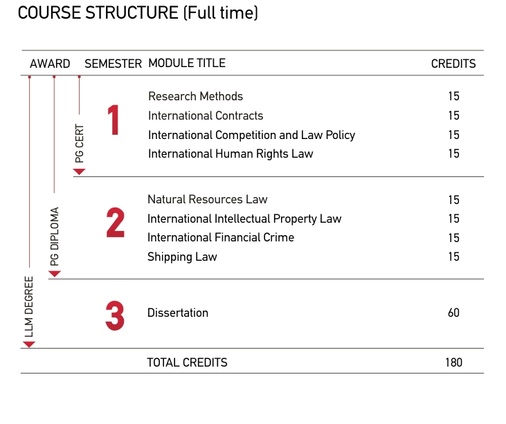 Legal essay structure